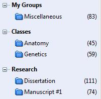 EndNote X6 uses a combination of Groups and Group Sets to help you organize and categorize your citations:
