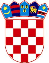 REPUBLIC OF CROATIA THE GOVERNMENT OF THE REPUBLIC OF CROATIA Analogue to Digital