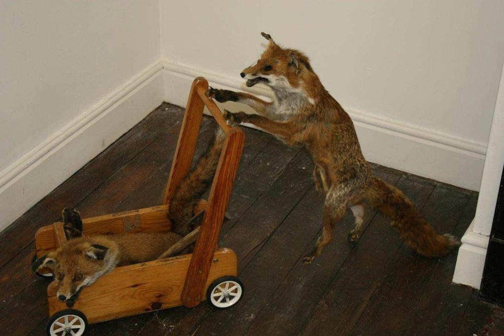 The fox pushing the trolley is hollow.