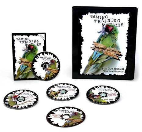 That s why I ve decided to announce the release of my Teach Your Parrot To Talk Version 2.0, With 3 Training CD s Full Of Real Birds Saying Real Words!