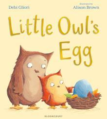 Why does Little Owl look sad? How can you tell where the owls are? What season is it? How could Little Owl keep the egg safe? Why do you think he is pointing to the egg?