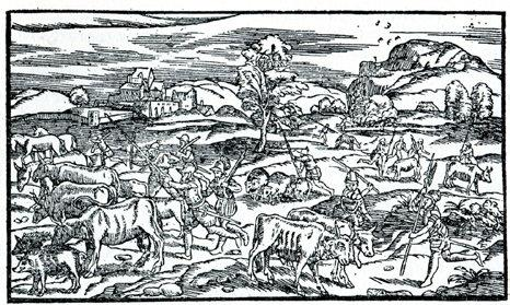 Collected by Raphaell Holinshed, & continued till the yeare 1547 by Richarde Stanyhurst.