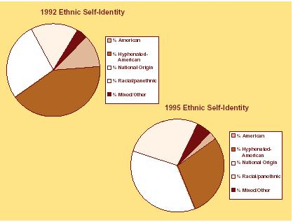 According to the initial data collected by Alejandro Portés and Rubén Rumbaut in 1992, as shown in pie graph: the largest proportion of the sample (41 percent) chose a hyphenated-american