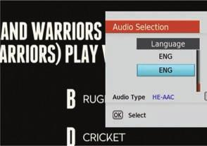 Subtitle Selection Audio Descriptions In User Options select Audio Selection. Use the up and down arrow keys on the remote to locate the language that features the small icon, then press OK.