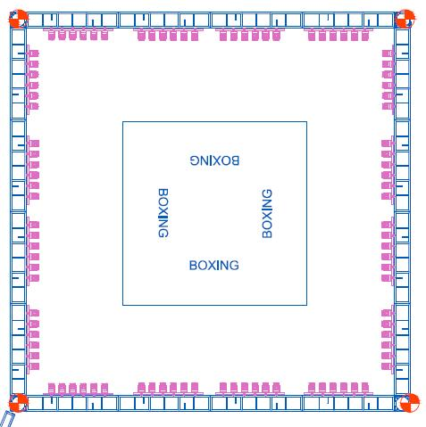 octagon for boxing and MMA events The