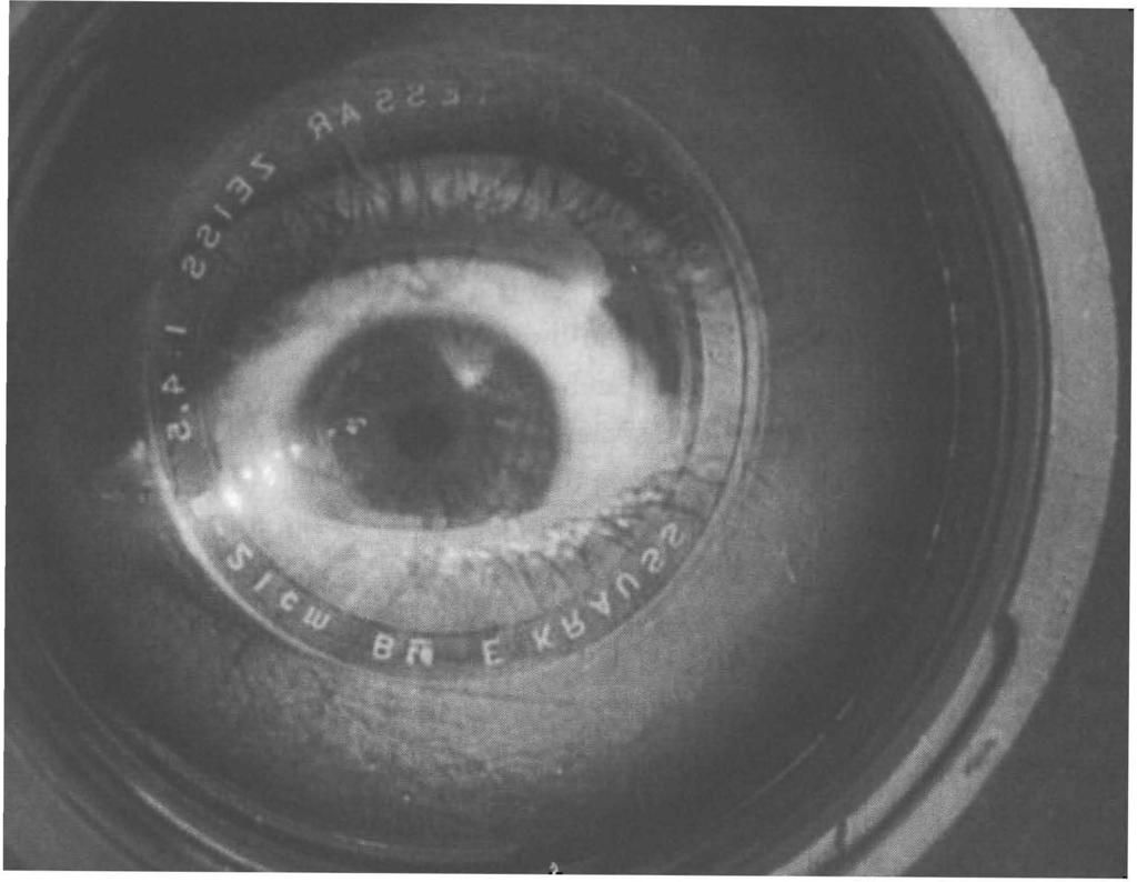 "86 Cinema as eye Figure 4.2 MAN WITH A MOVIE CAMERA: The ""kino-eye"" conquering time and space."
