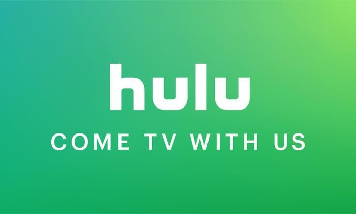 Hulu 7 million subs Grew more than 40% in 2017 Only operates in the US compared to Netflix being