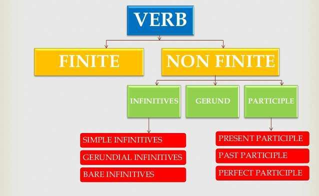 SSC Programme Lesson 1 : Gerund Definition Gerund is a non-finite verb. It looks like a verb but acts like a noun. When verb+ing works as a noun and verb, it is called Gerund. Functions: 1.