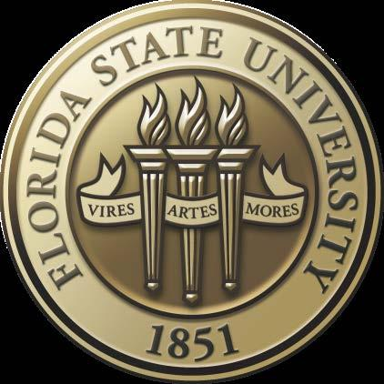 FLORIDA STATE UNIVERSITY Requirements for Electronic