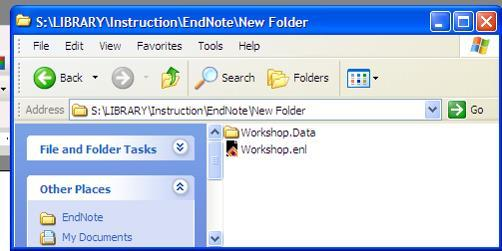 created 2 files in your folder (Data